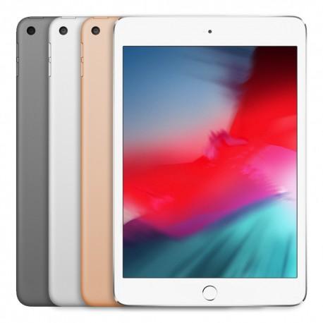iPad Mini 2019 - Ricondizionato