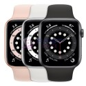 Apple Watch Series 6 Acciao